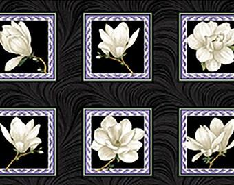 Quilt Fabric, Accent on Magnolias, Magnolia Blooms, Blocks Cream/Black, Floral Quilt Fabric, Benartex, Jackie Robinson, Animas Quilts
