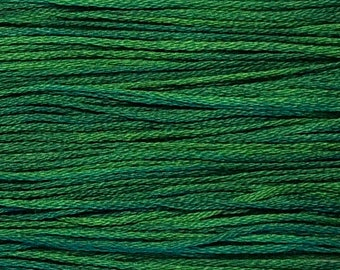 Weeks Dye Works, Envy, WDW-2173, 5 YARD Skein, Hand Dyed Cotton, Embroidery Floss, Cross Stitch, Hand Embroidery, Punch Needle