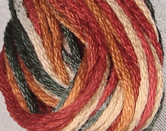 Valdani, 6 Strand Cotton Floss, M29, Countryside, Embroidery Floss, Variegated Floss, Hand Dyed Floss, Wool Applique, Punch Needle