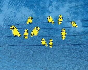 Yellow Birds - 8x10 Print