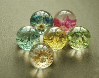 30Pcs Dry Flower Clear round Cabs 14mm
