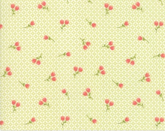 Strawberry Jam by Corey Yoder for Moda 29064 17 Seedling ~ By the Half Yard ~