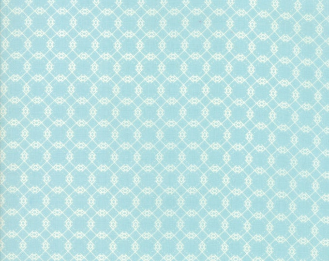 Garden Variety by Lella Boutique for Moda 5074 13 Blue Sky ~By the half yard~