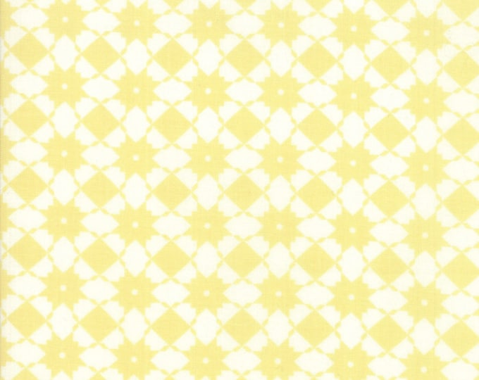 Garden Variety by Lella Boutique for Moda 5072 17 Sunshine ~By the half yard~
