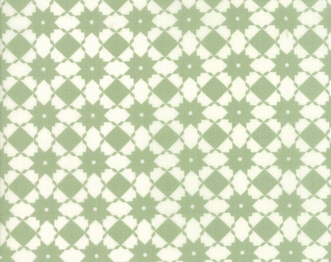 Garden Variety by Lella Boutique for Moda 5072 11 Grass ~By the half yard~