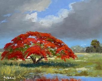 South Florida Royal Poinciana Landscape Art Print.