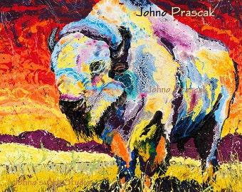 White Buffalo Art, Native American art, Wild Buffalo, The Great Plains, Modern wall art, Johno Prascak