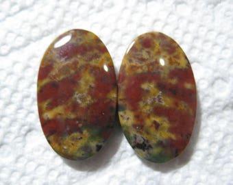 Bloodstone earring pair .......          23 x 13 x 3.6 mm ...      B4613