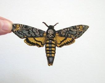 deaths head moth pin brooch