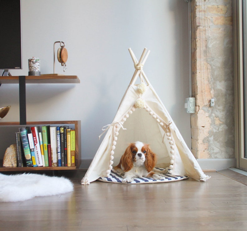 Extra Stable Pet Teepee  Modern Dog Bed from Natural Canvas image 0