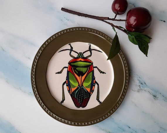 BUG OUT WARE Dinner Plate: Fabulous in Khaki