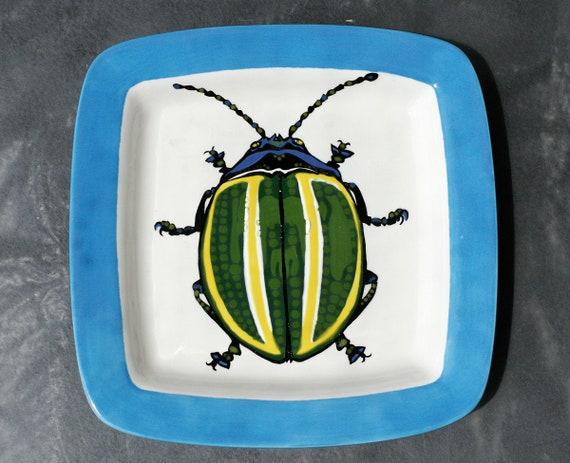 BUG OUT WARE- Square Stacking Art Plate: Desmagramma Martinezi