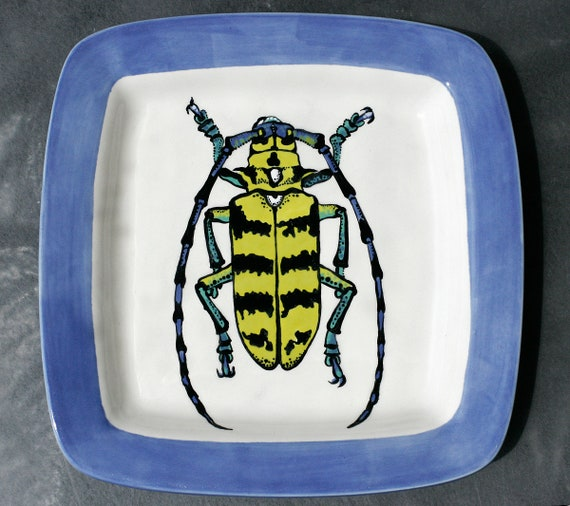 BUG OUT WARE- Square Stacking Art Plate: Bumble Bee Beetle