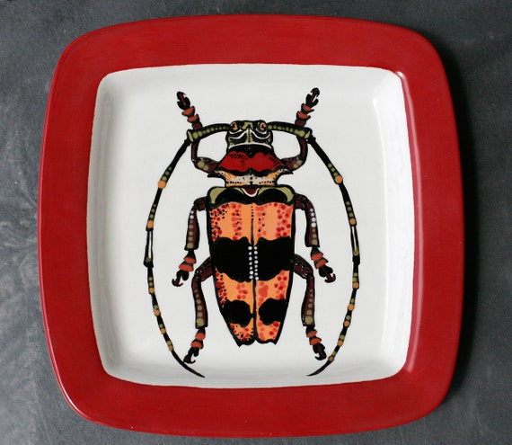 BUG OUT WARE- Square Stacking Art Plate: Red Horned Beetle at the Bachelor Party