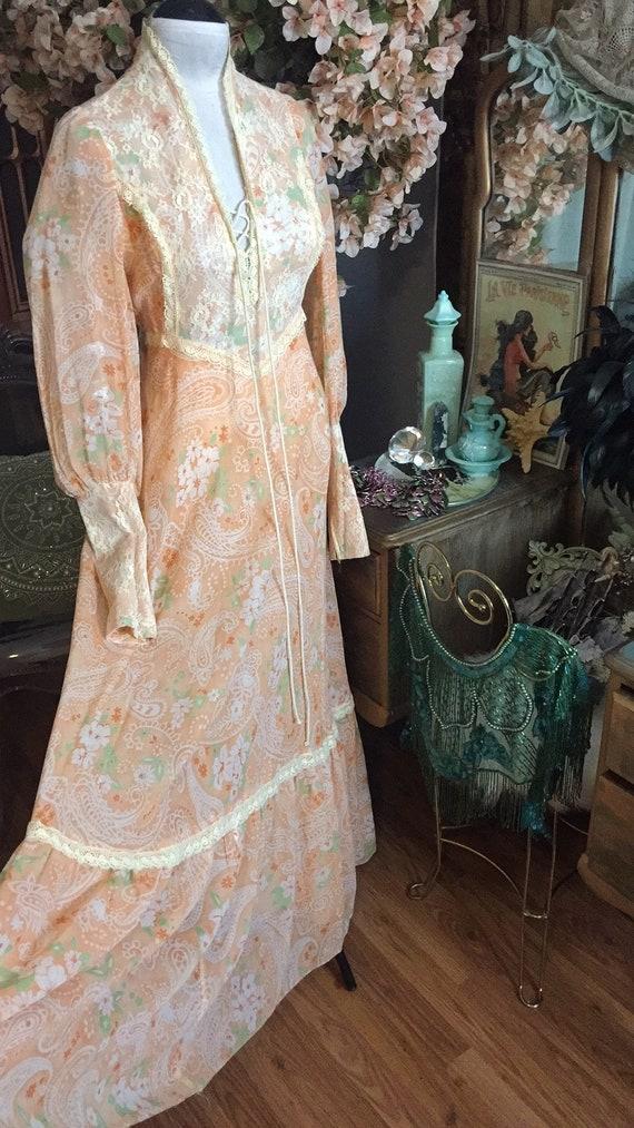 1970s Prairie Rennaisance Dress Gunne Sax Style - image 6