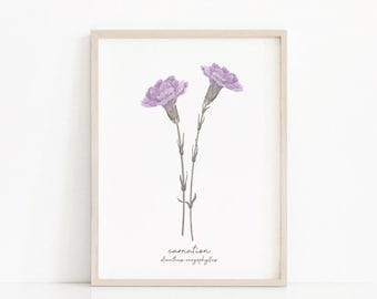 Carnation Purple Violet Lavender Lilac Botanical Art Print January Birth Flower Mother's Day Gift Birthday Girl Boy Daughter Son Mom