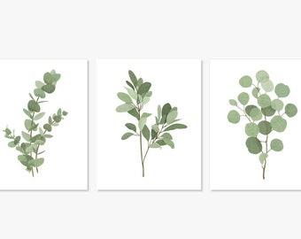Set of 3 Botanical Art Prints, Eucalyptus Leaf Stems, Watercolor Triple Three Trio
