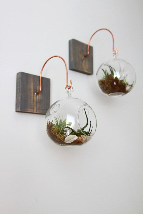 Terrarium Bois bois et cuivre monter avec terrarium / / unique décoration | etsy