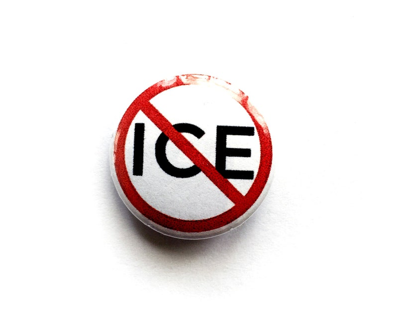No ICE 1 Pin   Support Immigrants  Dreamers  Resist  image 0