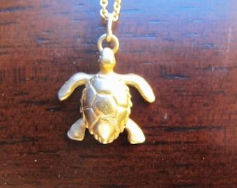Sea Turtle in Gold