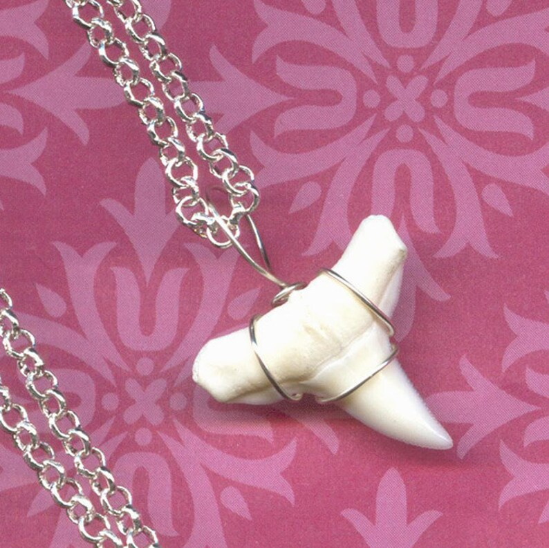 Gifts for Mom Wire Wrapped White SHARK Tooth Necklace Pendant - 3/4