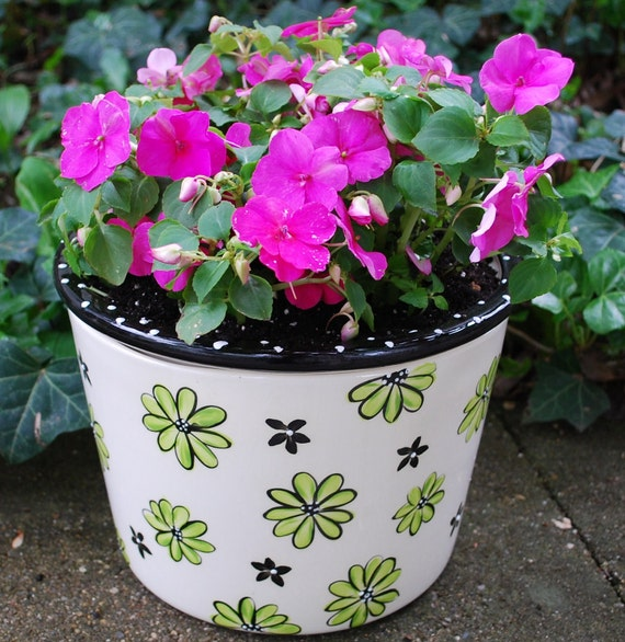 Large Self Watering African Violet Pot Etsy