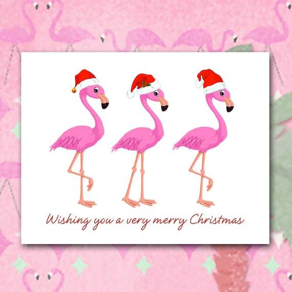 Flamingo Christmas Cards.Flamingo Christmas Cards Santa Hats Trio Of Flamingos Florida Birds Comical Christmas Card Bright Pink And Red Set Of Ten Blank Inside