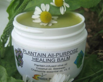 Pet Skin Problems Balm, Plantain, Chamomile, Coconut Oil, Healing Herbal Salve, Dogs, Cats