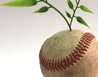 AstroSprout [baseball lie form by leVin]