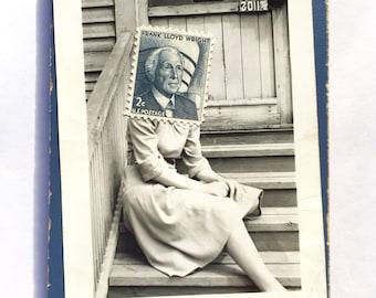 Fran Lloyd Wright Fridge Magnet by Dan Levin