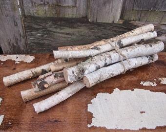 Birch WOOD BUNDLE - 11 White Birch Branches and Twigs - DIY Natural Centerpiece