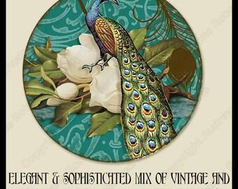 images for pendant bottle cap Victorian Digital collage sheet circles Versailles Paris Marie Antoinette French peacock corset macaron