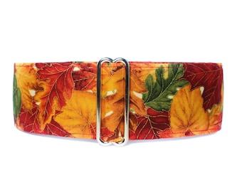 Fall Martingale Dog Collar, Fall Dog Collar, Fall Leaves, Autumn Martingale Collar, Fall Leaves Dog Collar