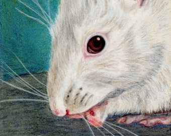 Strawberry the rat portrait 5x7 Giclee print matted to 8x 10