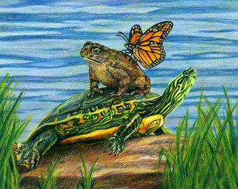 """Giclee print - Toad, Turtle and Butterfly - Art Print matted to 10x8"""""""
