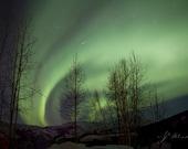 northern lights photograph, aurora trails, celestial photography, fine art print, night sky, green lights
