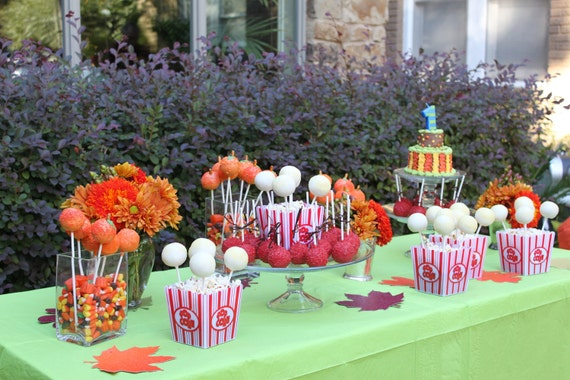 My Son's Fall Themed Birthday Party | Lady Boss Chick