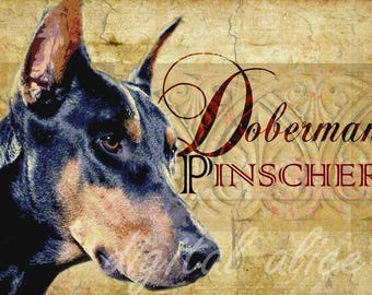 Dog Lovers Art - DOBERMAN PINSCHER DOG  Dobie - Vintage Look Contemporary Art Print Poster - Artist signed - 3 sizes - customizable