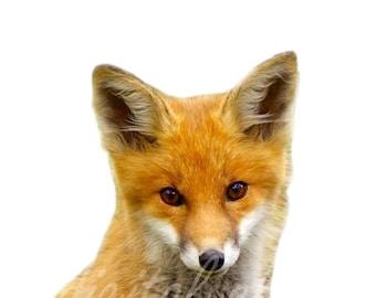 Digital BABY FOX PRINT  -Instant Download Digital Printable-  Modern Minimalist Wild Life - Fox Art - Minimalist Nursery