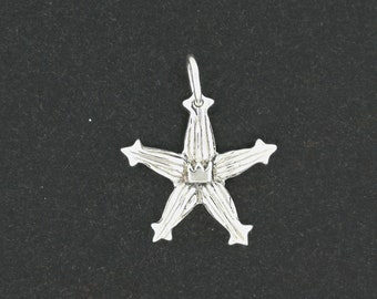 Kingdom Hearts Wayfinder Charm Pendant in Sterling Silver