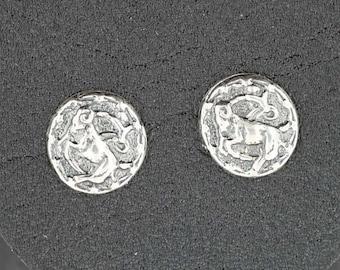 Sterling Silver Zodiac Stud Earrings Capricorn