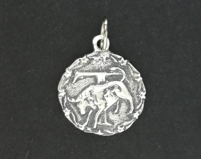 Zodiac Medallion Taurus in Sterling Silver or Antique Bronze