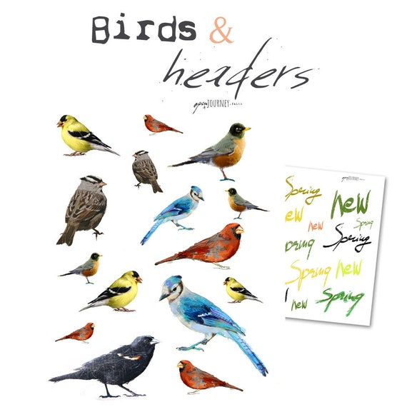 Birds and headers illustrations - digital download for bible journaling, card making and craft