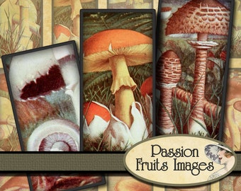 Vintage French Mushroom Images 1 x 2 Domino Tiles Digital Collage Sheet--Instant Download