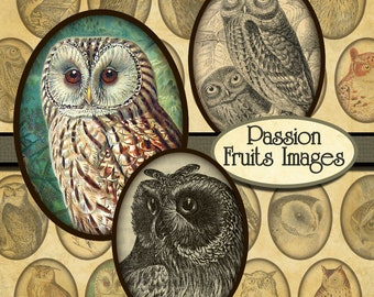 Victorian Owl Images Digital Collage Sheet- 30 x40 cabochons-- Instant Download