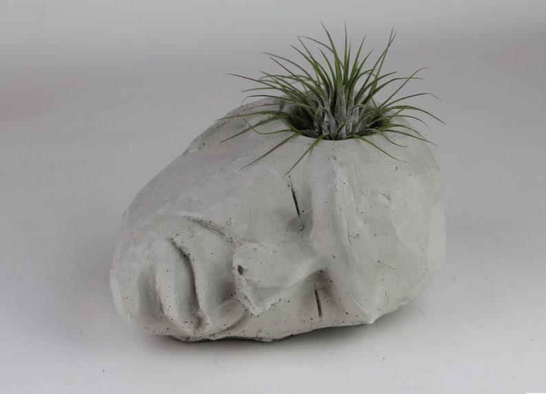 Concrete Head Air Plant Holder Succulent Planter