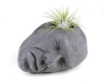 Concrete Head , Air Plant Holder, Succulent Planter