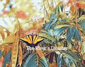Swallowtail Butterfly on Mimosa Tree,  5 x 7 Matted Print, Nature Print, Butterflies, Digital Art Print