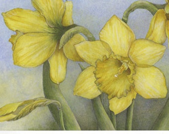 Daffodils ~ Springtime Splendor - art note card, golden spring flowers, watercolor art, detailed wild flower jonquil