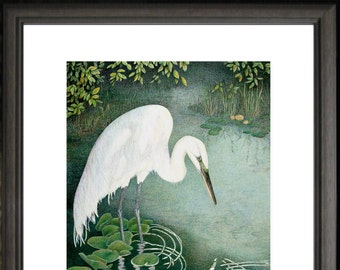 Great White Egret - Open edition print from original colored pencil drawing, detailed Nature art, wild life water bird, fantasy home decor